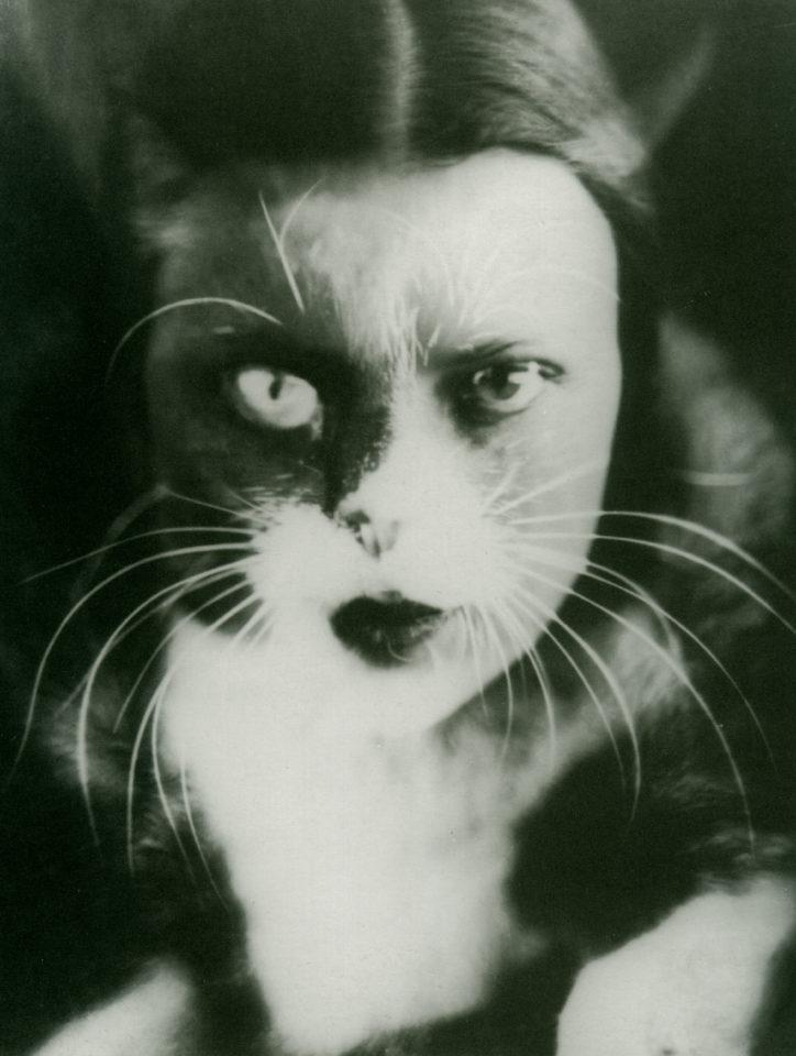 c4 w wultz io + gatto 1932